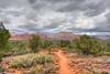 Wagonwheel trail