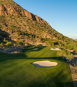 the-phoenician-9