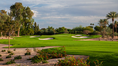 the-phoenician-18
