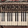 Meinel Harold Accordion