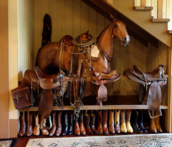 Saddles Steak