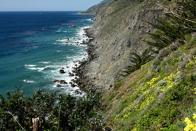 The beautiful coast - Big Sur, CA ... March 10, 2009 ... Photo by Emily Page