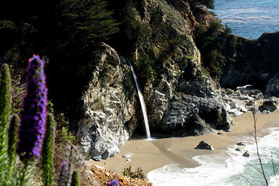 Julia Pfeiffer Burns State Park - Big Sur, CA ... March 10, 2009 ... Photo by Rob Page III