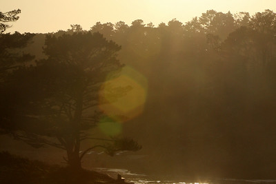 Sunset in Point Lobos State Reserve - Carmel, CA ... March 11, 2009 ... Photo by Rob Page III