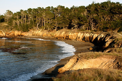 Whaler's Cove at Point Lobos State Park - Carmel, CA ... March 11, 2009 ... Photo by Rob Page III