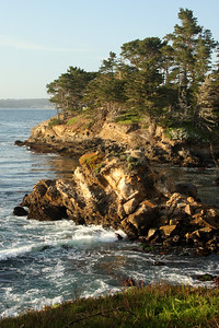 Point Lobos State Reserve - Carmel, CA ... March 11, 2009 ... Photo by Rob Page III