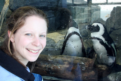 Emily and some of the penguins at the Monterey Aquarium - Monterey, CA ... March 11, 2009 ... Photo by Rob Page III