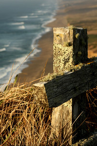 A fence in Point Reyes National Seashore - Point Reyes National Seashore, CA ... March 12, 2009 ... Photo by Rob Page III