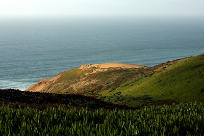 Point Reyes National Seashore, CA ... March 12, 2009 ... Photo by Rob Page III