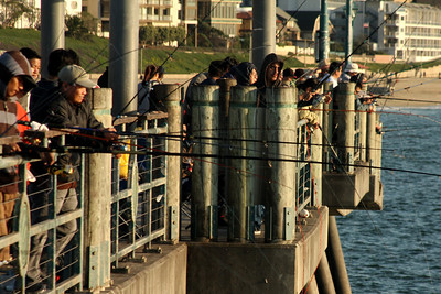 Fishing off the pier - Redondo Beach, CA ... March 7, 2009 ... Photo by Rob Page III