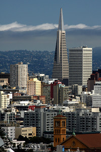 The Transamerica Pyramid rises above the city - San Francisco, CA ... August 14, 2010 ... Photo by Rob Page III