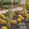 Rancho Mirage - Sunnylands Centre & Gardens