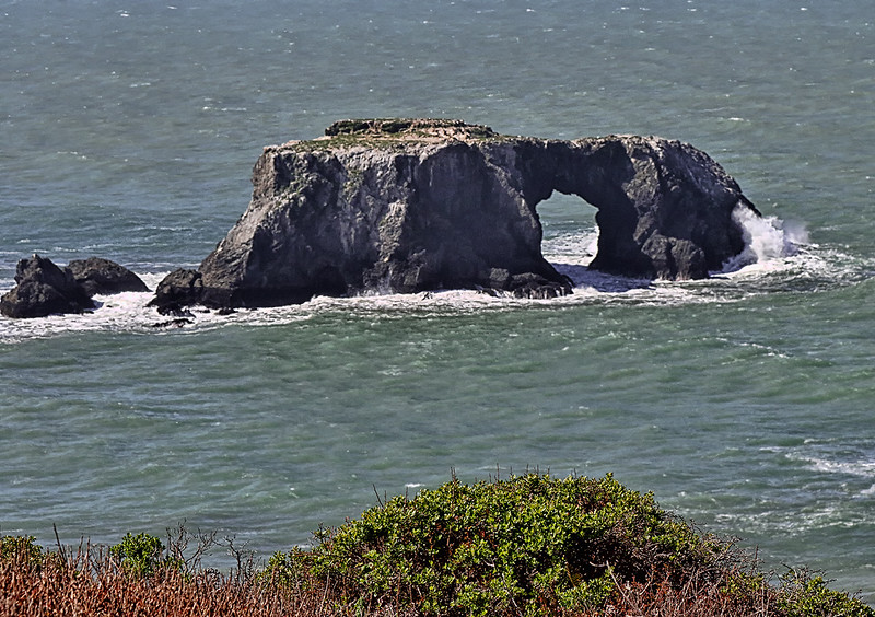Bodega Coast