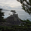 Pebble Beach, California 0689