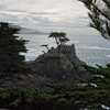 Pebble Beach, California 0688