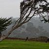 Pebble Beach, California 0680