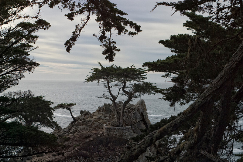 Pebble Beach, California 0692