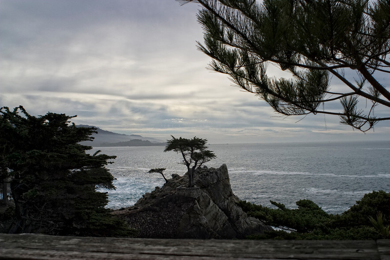 Pebble Beach, California 0687