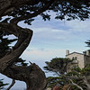 Pebble Beach, California 0695