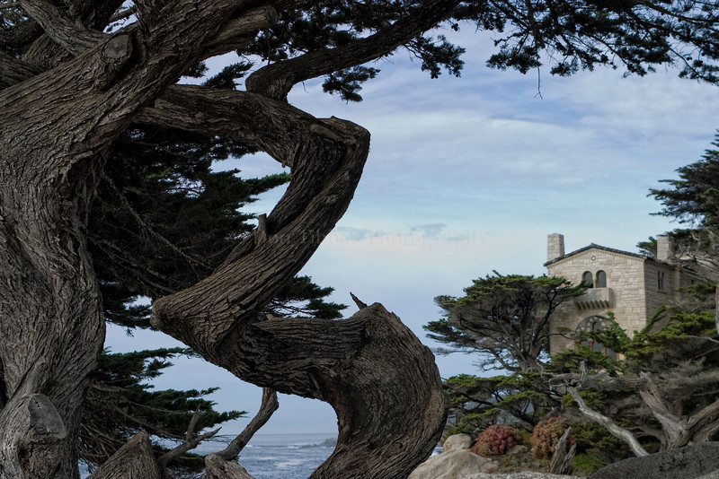 Pebble Beach, California 0696