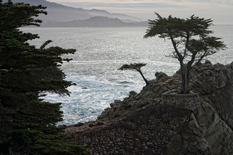 Pebble Beach, California 0690
