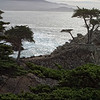 Pebble Beach, California 0691