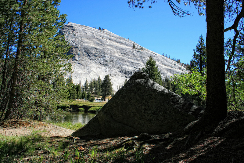 Half Dome. Yosemite National Park