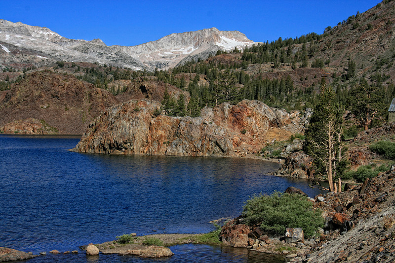 Ellery Lake; Yosemite National Park