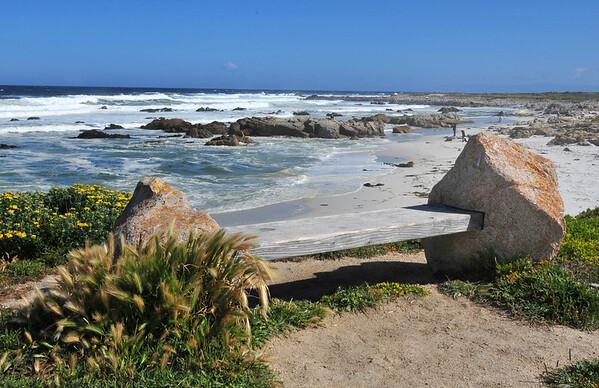 Sitting on the coast