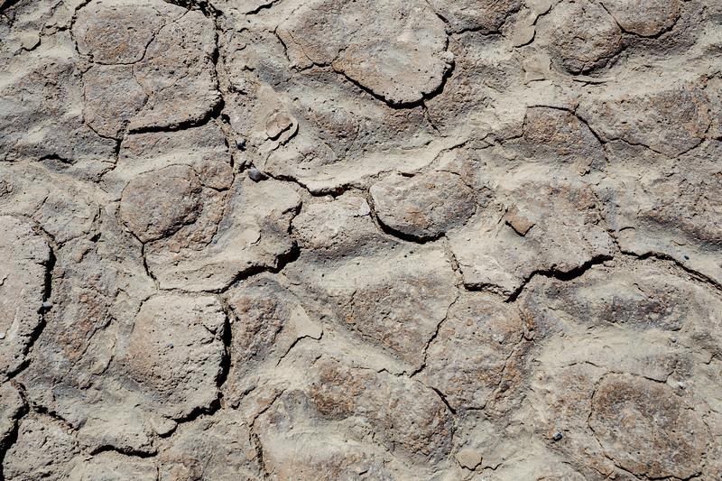 Death Valley, Patterns - Large brown irregular mud tiles, above