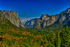 Yosemite Valley and Trees