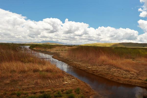 Bird Sanctuary near Napa Valley
