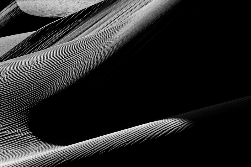 Death Valley, Mesquite Flat - Dune telephoto with large dark area, black and white