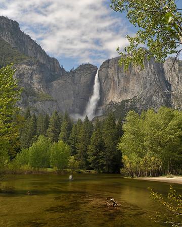 Yosemite Falls and river