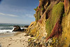 Laguna Beach area - beautiful cliffs