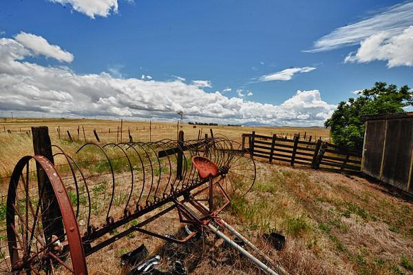 Vibrant Farm scene
