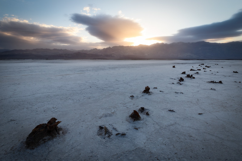Death Valley, Badwater - Petrified stumps in salt flats at sunrise
