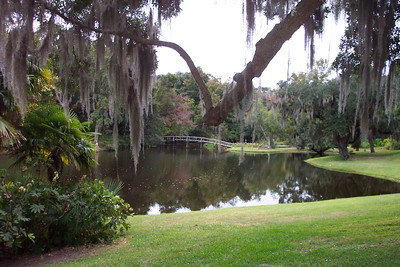Ashley River behind the Middleton Inn