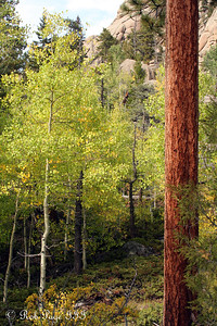 The beautiful backcountry - Rocky Mountain N.P., ... September 20, 2008 ... Photo by Rob Page III