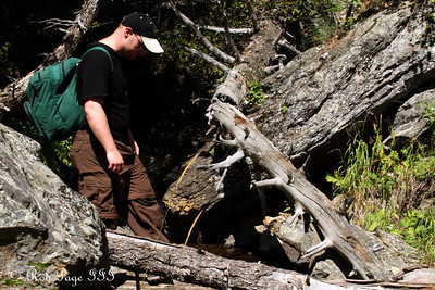 Jon hikes along the trail - Colorado ... September 4, 2011 ... Photo by Rob Page III