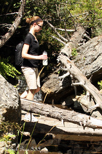 Emily hikes along the trail - Colorado ... September 4, 2011 ... Photo by Rob Page III