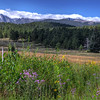 Upper Beaver Meadows