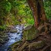 Iao Stream - Iao Valley State Park, Wailuku, HI
