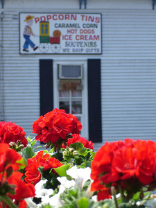 Flowers and the Popcorn Shop - Chagrin Falls, OH ... June 10, 2005 ... Photo by Rob Page III