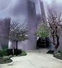 Back Entrance, Walt Disney Hall, Los Angeles, CA