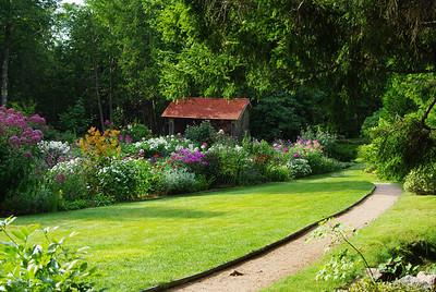 Thuja Garden