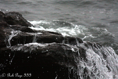 Hurricane Earl rolls in - Pemaquid, ME ... September 3, 2010 ... Photo by Rob Page III