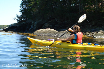 Paddling furiously to catch up - Pemaquid, ME ... September 5, 2009 ... Photo by Rob Page III