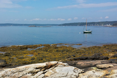 Loooking out to sea - New Harbor, ME ... August 31, 2013 ... Photo by Rob Page III