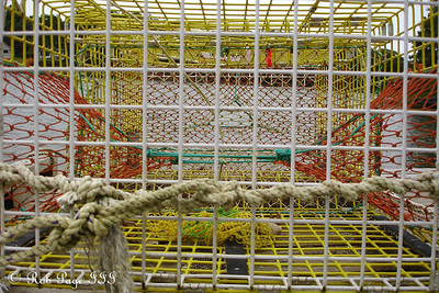 The inside of a lobster trap - Pemaquid, ME ... August 27, 2006 ... Photo by Rob Page III